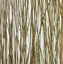 Dekoacryl in Natur Gräser